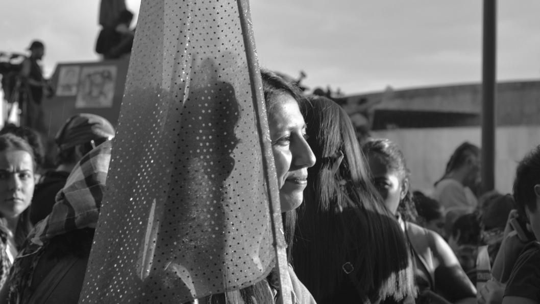 Mexico-feminismo-mujeres-protesta-Lulu-v-Barrera