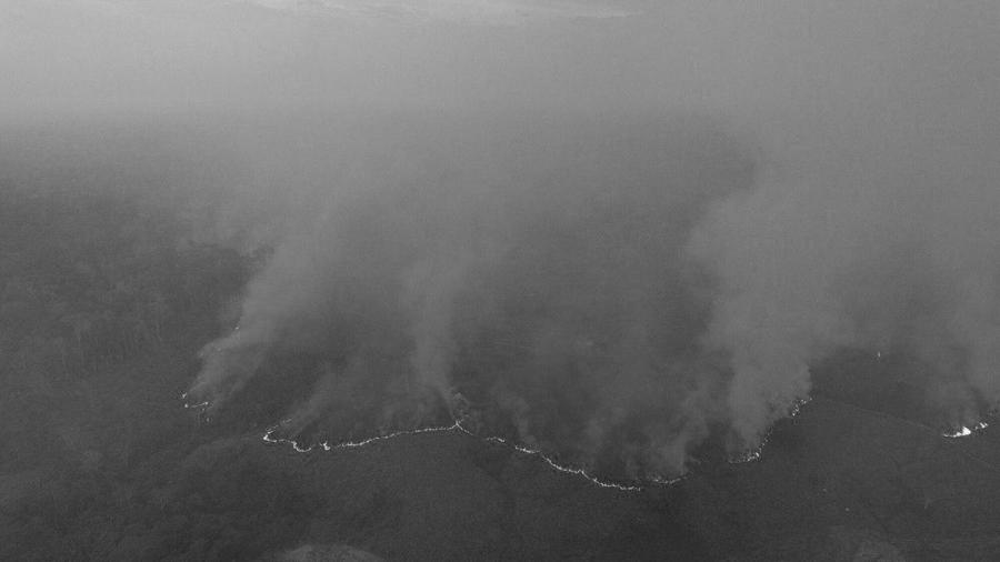 Pedro-Devani-Amazona-Brasil-incendios-selva-fuego
