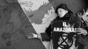 Amazonas: ¿Qué vamos a hacer?