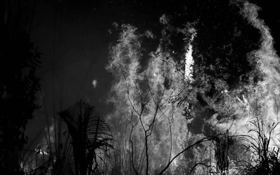 Amazonia incendios Brasil la-tinta