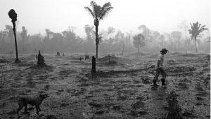¿Son comparables las políticas ambientales de Jair Bolsonaro y Evo Morales?