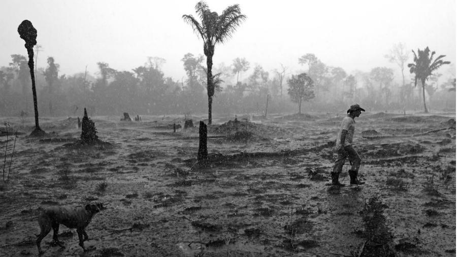 Brasil masivos incendios en Amazonia la-tinta