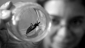 La actualidad del Chagas: desigualdad social y de género