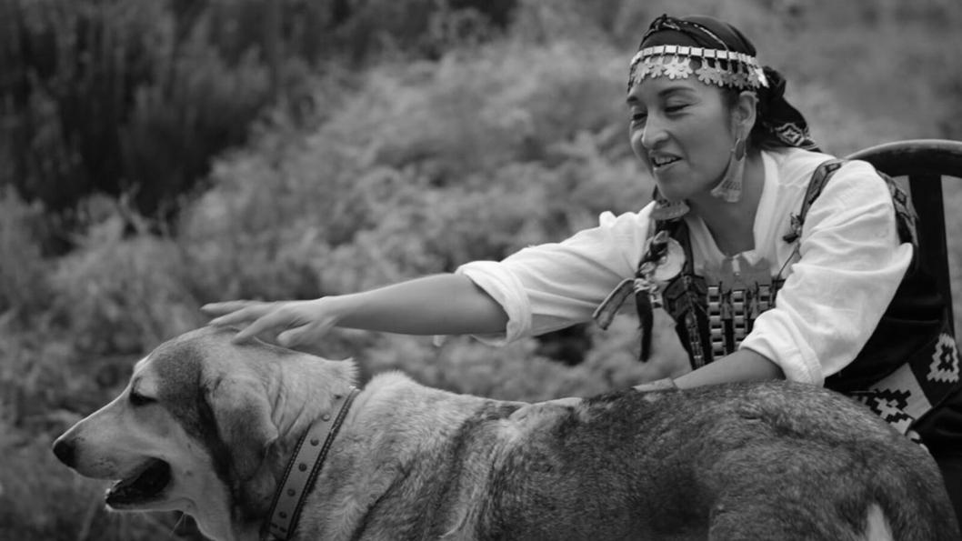 moira-millan-lider-mapuche