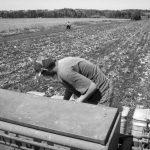 Procesan a tres productores de Pergamino por contaminar con agrotóxicos