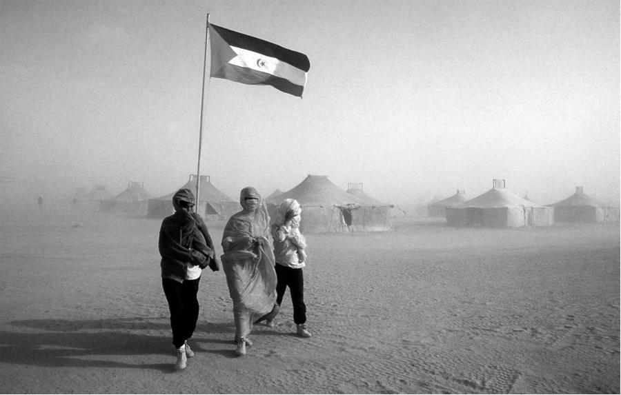 Sahara mujeres saharauis la-tinta