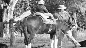 Gregorio y los caballos: tatuajes del monte