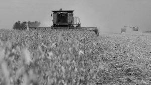 ¿Por qué Argentina necesita una reforma agraria integral y popular?