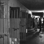 Cárceles sin cuarentena