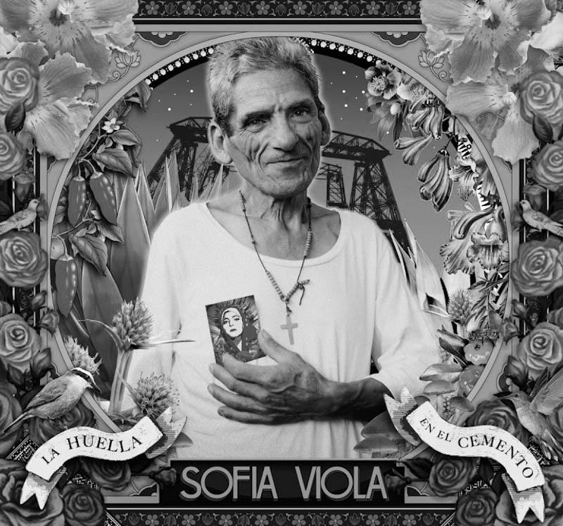 sofia-viola