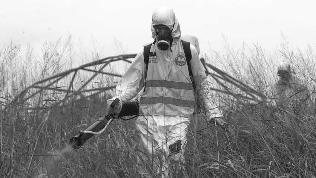 Enrique-Marcarian-Reuters-Fumigacion-Buenos-Aires-Enfermedades-Salud