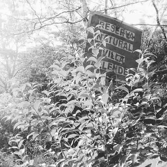 Mineria-villa-allende-sierras-chicas-reserva-natural-03