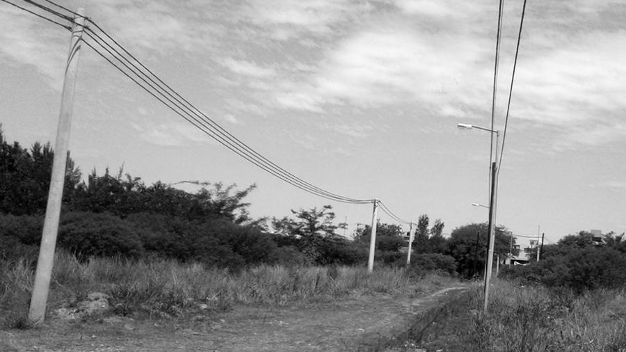 Altos-Estanzuela-barrio-privado-bosque-nativo-la-calera-sala-prensa-ambiental-03