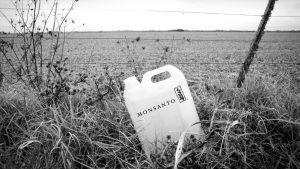 Monsanto y el conflicto por la Ley de Semillas: actualidad y perspectivas