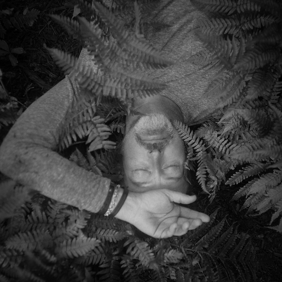 Lori-Vrba-retrato-plantas