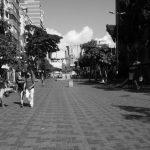 Diario de cuarentena en Venezuela: delirio sin fiebre