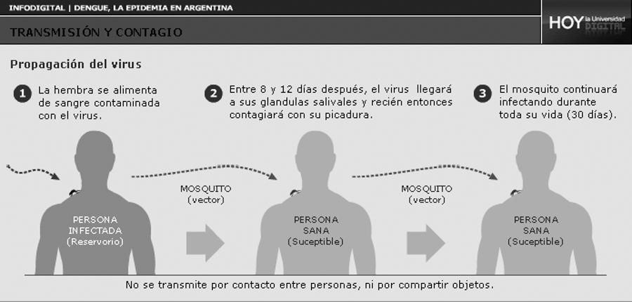 dengue-infografia-trasmision
