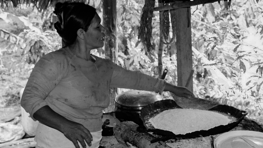 Casabe-harina-yuca-mandioca