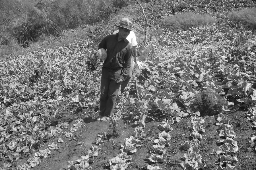 Bolivia agroecologia la-tinta-jpg