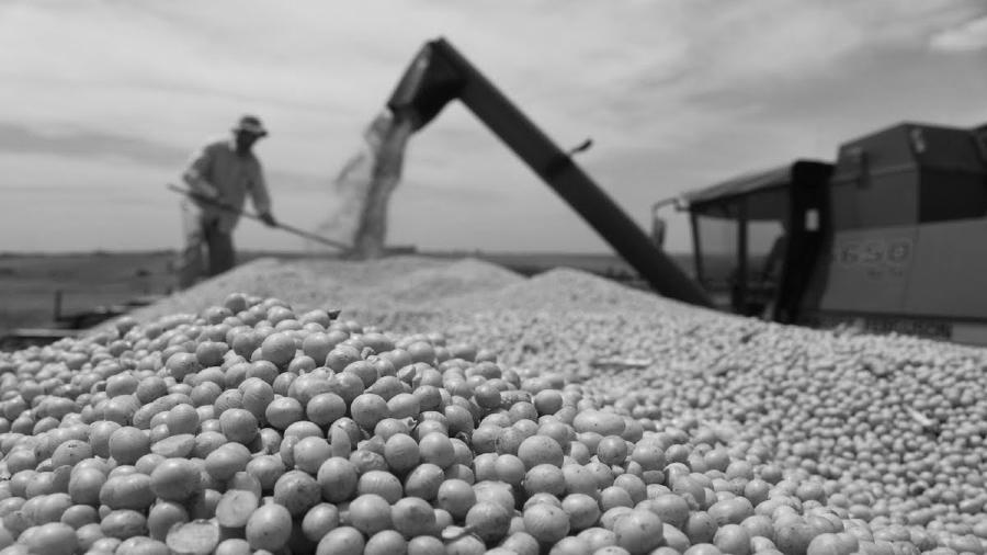 Bolivia produccion de soja la-tinta