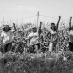 Ley De Acceso a la Tierra Ya: por un país con alimentos sanos y a precio justo