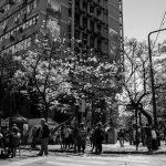 La Municipalidad de Córdoba hace ajustes y recortes ilegales en plena pandemia
