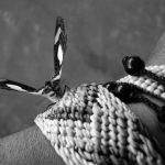 Cecilia Basaldúa: intentan elevar a juicio la causa sin esclarecer su feminicidio