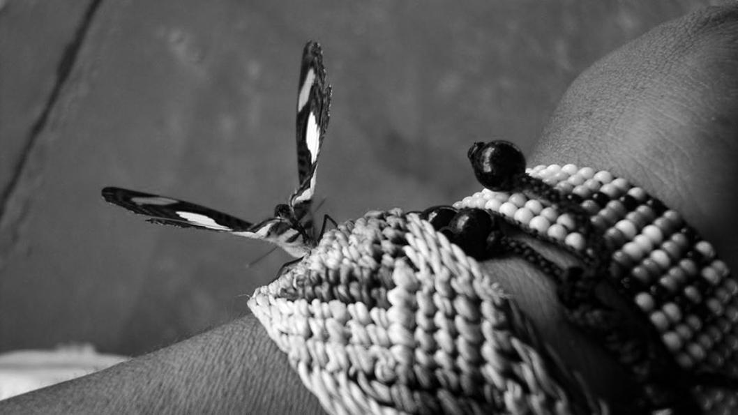 Cecilia-Basaldúa-Isla-Uros-Perú-femicidio-pulsera-mariposa