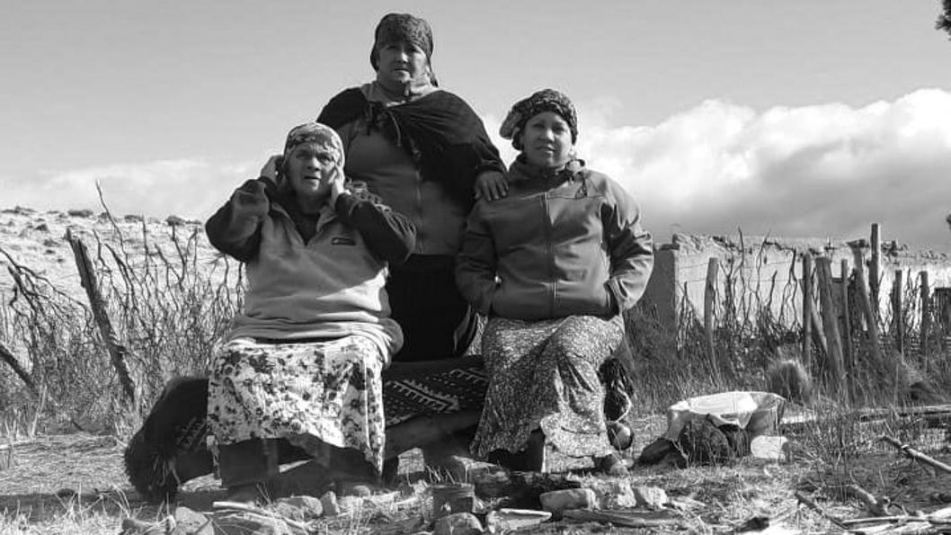 Maira-Antieco-María-Luisa-Hincaleo-Matilde-Jofre-territorio-recuperado-mapuches-pueblos-originarios