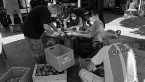 Movimientos en la pandemia: autogestionar la comida y la vida