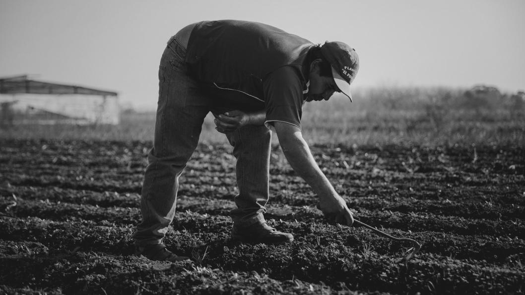 campo-soberania-alimentaria-agroecología-3