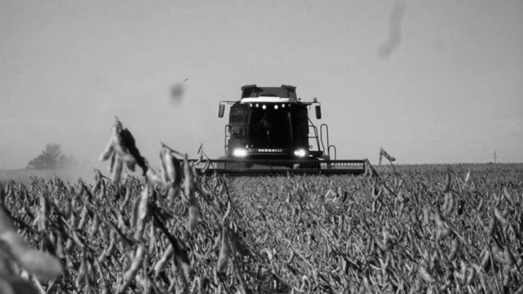 cosecha-soja-agronegocio-agroecología