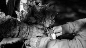La Feria Agroecológica de Córdoba reclama poder trabajar