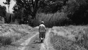 De la academia al territorio: educación por una Soberanía Alimentaria
