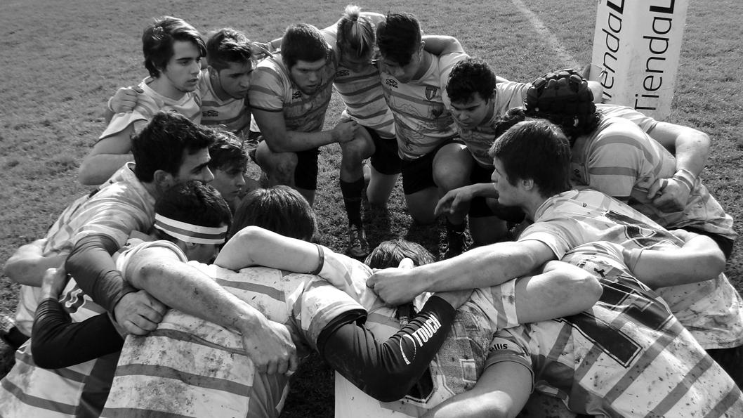rugby-violencia