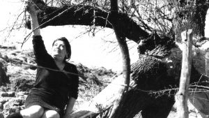 Edith Vera, una poeta necesaria