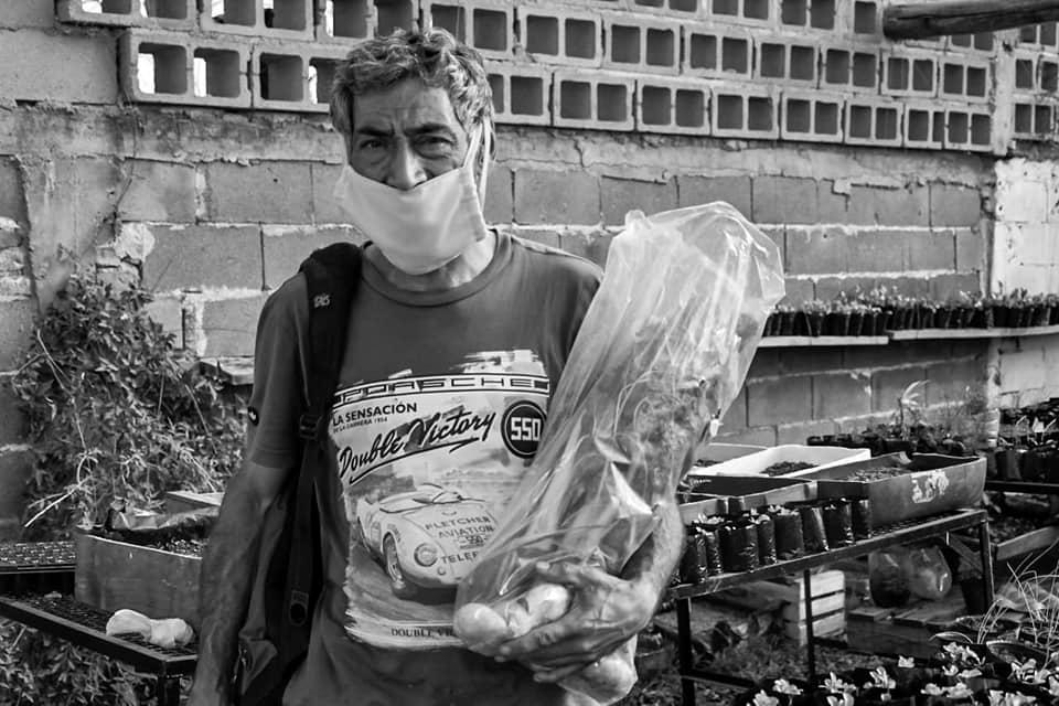 la-morera-alimento-bolson-verdura
