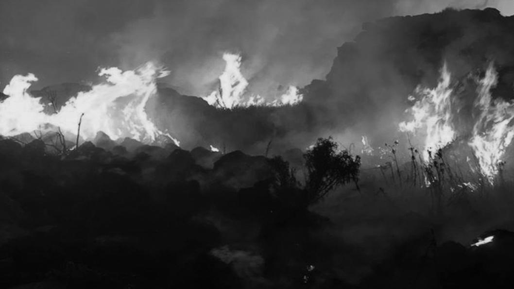 Incendio-campo-El-Durazno-estancia-Sa