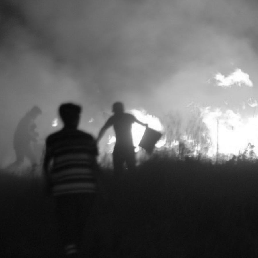 Incendios-Cordoba-bosque-fuego-la-tinta-01