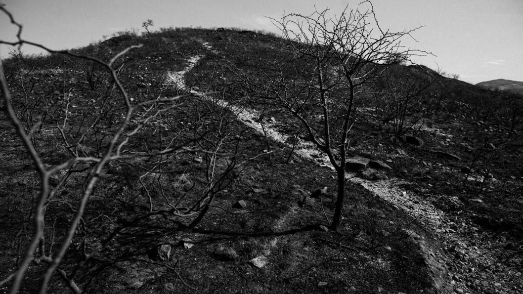 Incendios-forestales-sierras-cordoba-Natalia-Roca-02