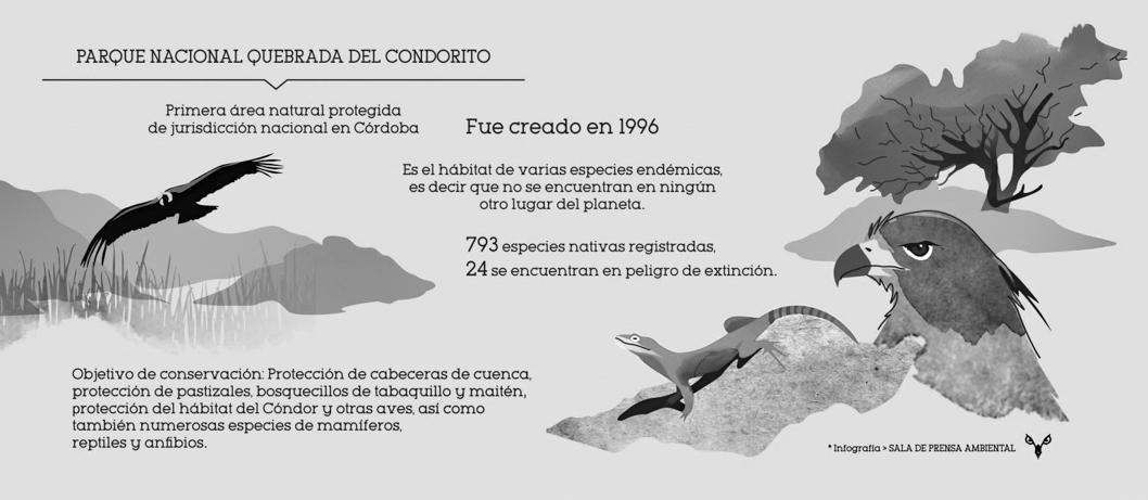 Infografía-Parque-nacional-quebrada-condorito