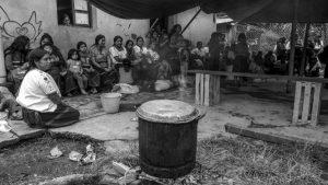 Magdalena: tierra de desplazadas