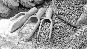Gluten free: ¿moda o alimentación consciente?