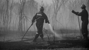 Los gobiernos, las corporaciones y algunas claves para entender los incendios argentinos