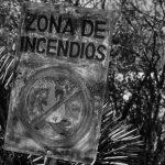 Plan Manejo del Fuego: todo lo que Córdoba no está haciendo bien