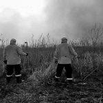 Incendios en el Delta: todos los caminos conducen a los productores agropecuarios
