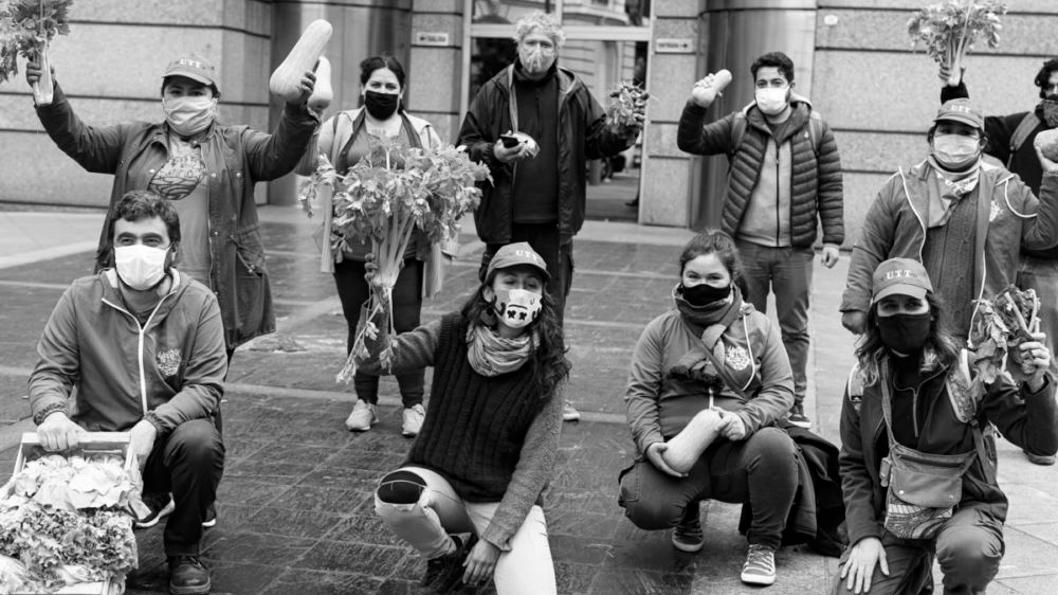verduras-UTT-barbijos-pandemia-reunión-Chávez-Neme