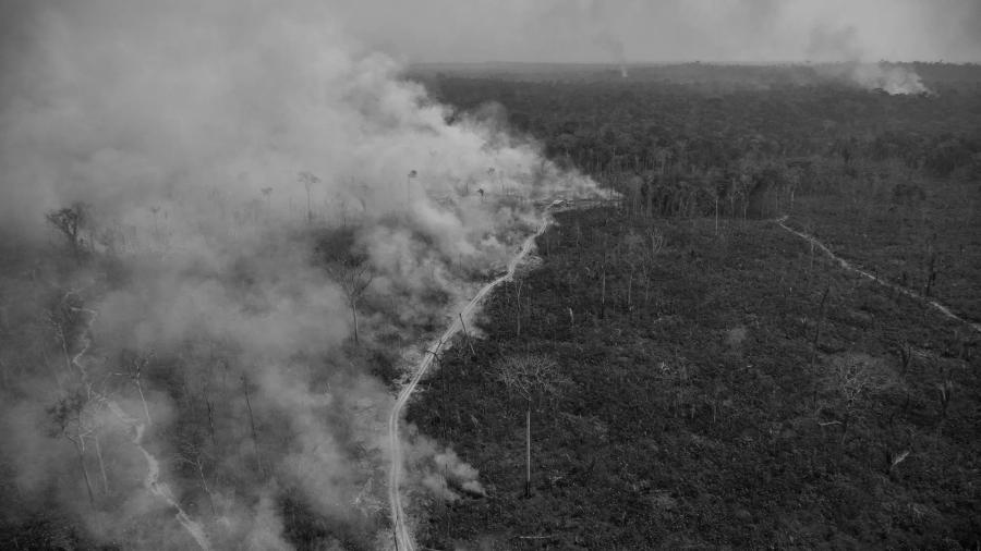 Brasil Amazonia incendios Bolsonaro la-tinta