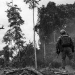 Colombia: las masacres no desaparecen con el glifosato