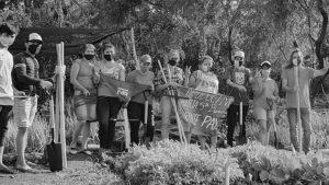 Se aprobó la Ley de Protección de Semillas Nativas y Criollas